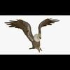 18 51 01 355 buzzardblendpic61 4
