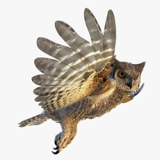 Great Horned Owl - rigged - animated 3D Model