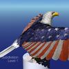 17 20 12 487 tt patriot highres cu 0014 4