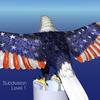 17 20 12 803 tt patriot highres cu 0025 4