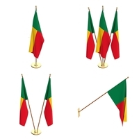 Benin Flag Pack 3D Model