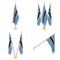 Botswana Flag Pack 3D Model