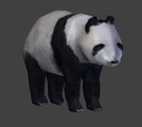 Panda Bear 3D Model