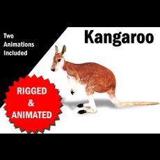Kangaroo Rigged and Animated 3D Model