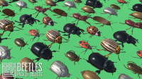 Beetles - pack of insects 3D Model