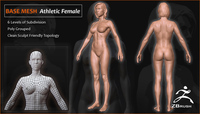 Athletic Female Starter Mesh 3D Model