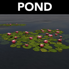 pond with lily pads 3D Model