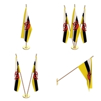 Brunei Flag Pack 3D Model
