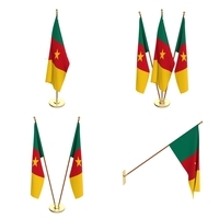 Cameroon Flag Pack 3D Model