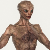 Realistic Male Alien 04 3D Model