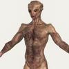 19 22 21 332 realistic alien 04 02 4