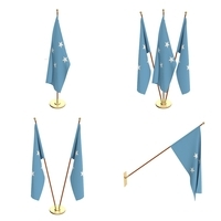 Federated States of Micronesia Flag Pack 3D Model