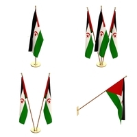 Western Sahara Flag Pack 3D Model