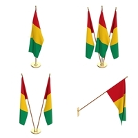 Guinea Flag Pack 3D Model