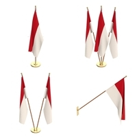 Indonesia Flag Pack 3D Model