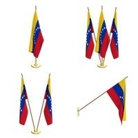 Venezuela Flag Pack 3D Model