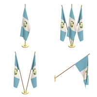 Guatemala Flag Pack 3D Model