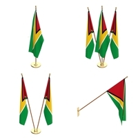 Guyana Flag Pack 3D Model