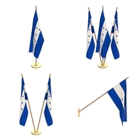 Honduras Flag Pack 3D Model