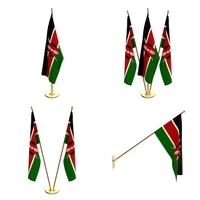 Kenya Flag Pack 3D Model