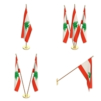 Lebanon Flag Pack 3D Model