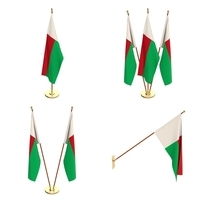 Madagascar Flag Pack 3D Model