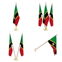 Saint Kitts And Nevis Flag Pack 3D Model