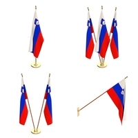 Slovenia Flag Pack 3D Model