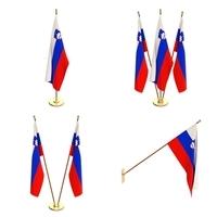Slovenia Flag Pack 3D Model