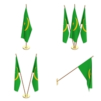 Mauritania Flag Pack 3D Model