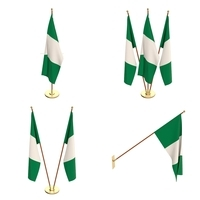Nigeria Flag Pack 3D Model