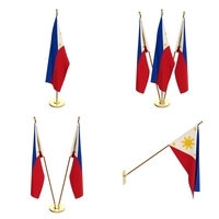 Philippines Flag Pack 3D Model