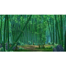 Bamboo forest 05 3D Model