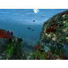 12 54 42 508 underwater world of coral and aquatic plants animated 003 1 4