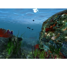 Underwater world of coral and aquatic plants animated 003 3D Model