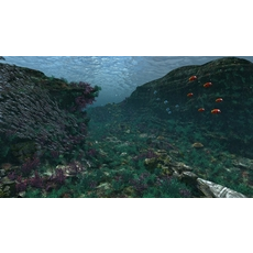 Underwater world of coral and aquatic plants animated 004 3D Model