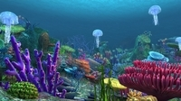 Underwater world of coral and aquatic plants animated 005 3D Model