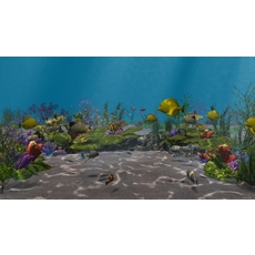 Underwater world of coral and aquatic plants animated 008 3D Model