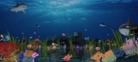 Underwater world of coral and aquatic plants animated 009 3D Model