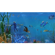 Underwater world of coral and aquatic plants animated 010 3D Model