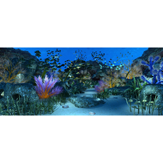 Underwater world of coral and aquatic plants animated 012 3D Model
