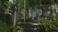 Forest Scene 09 3D Model