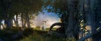 Forest Scene 19 3D Model