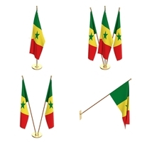 Senegal Flag Pack 3D Model