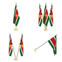 Suriname Flag Pack 3D Model