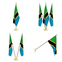Tanzania Flag Pack 3D Model