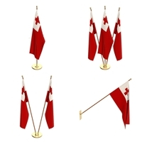 Tonga Flag Pack 3D Model
