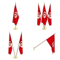 Tunisia Flag Pack 3D Model