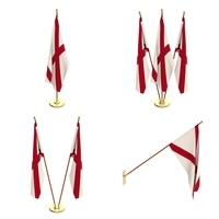 Alabama Flag Pack 3D Model