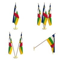 Central African Republic Flag Pack 3D Model